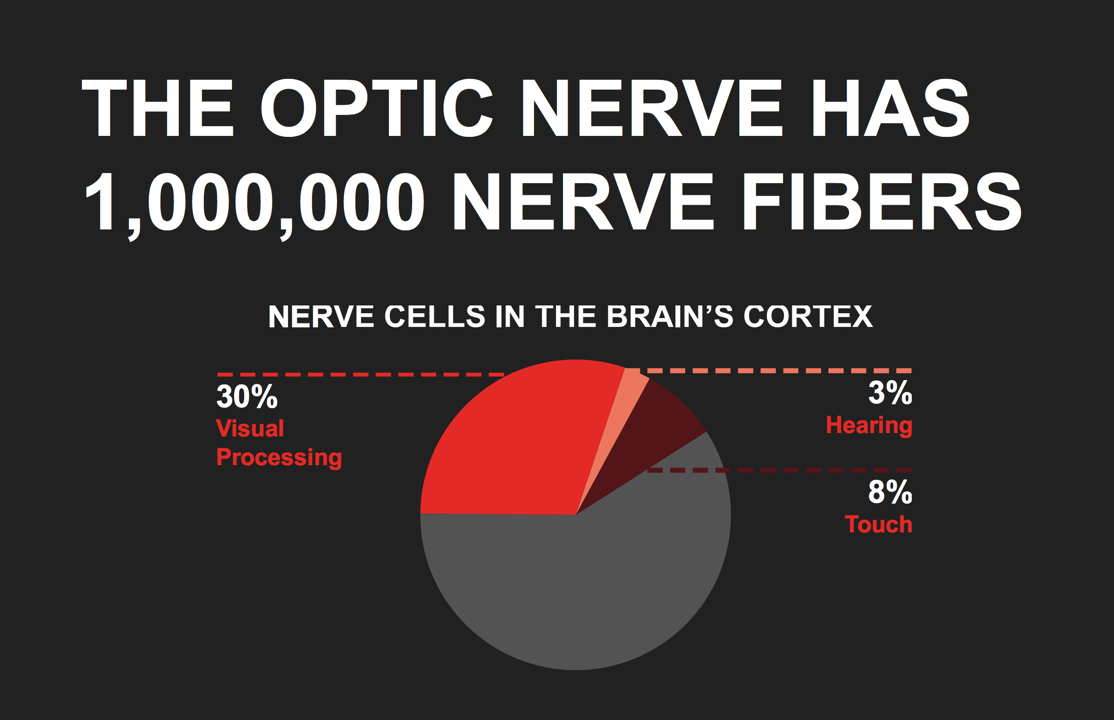 The optic nerve has 1,000,000 nerve fibers